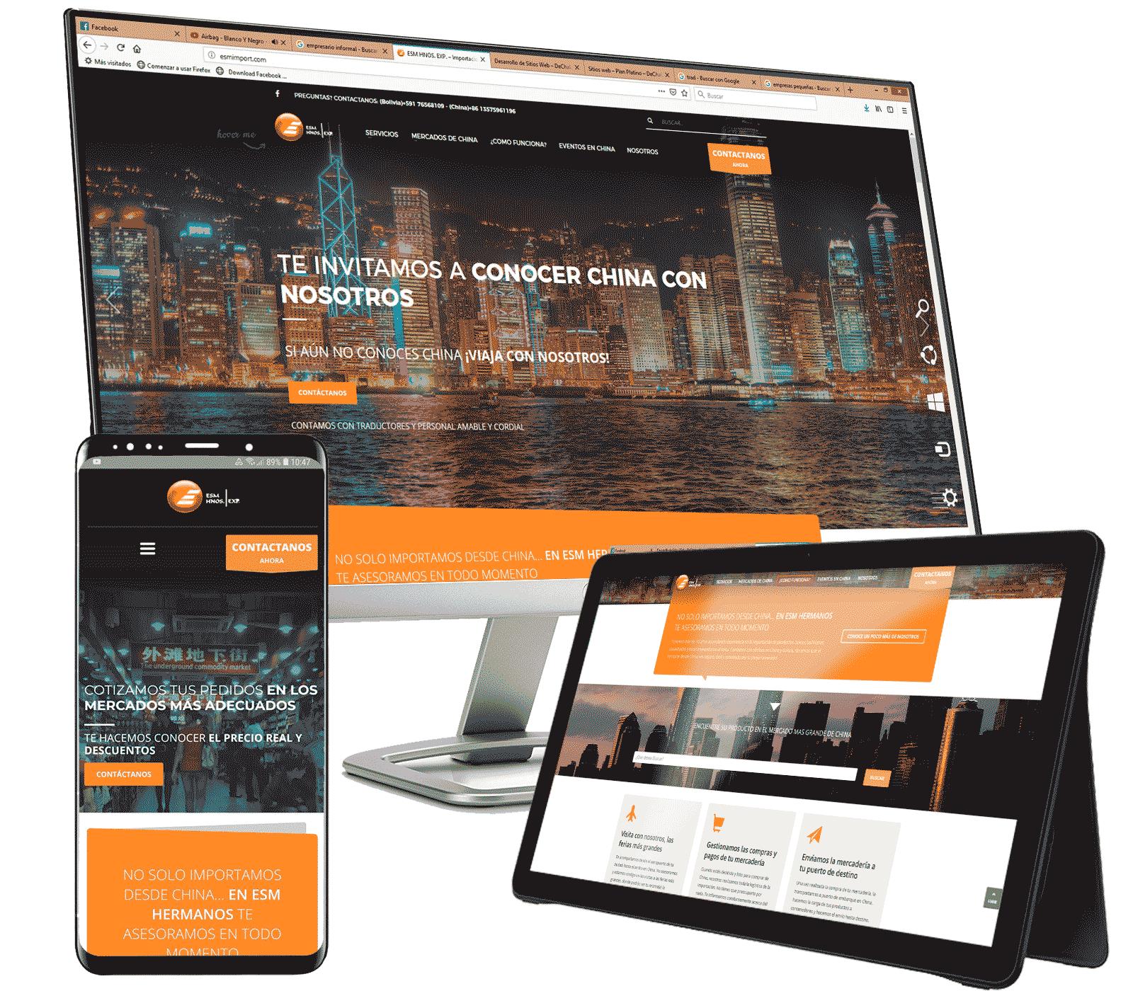 diseño-web-bolivia